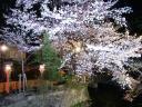 祇園の様子